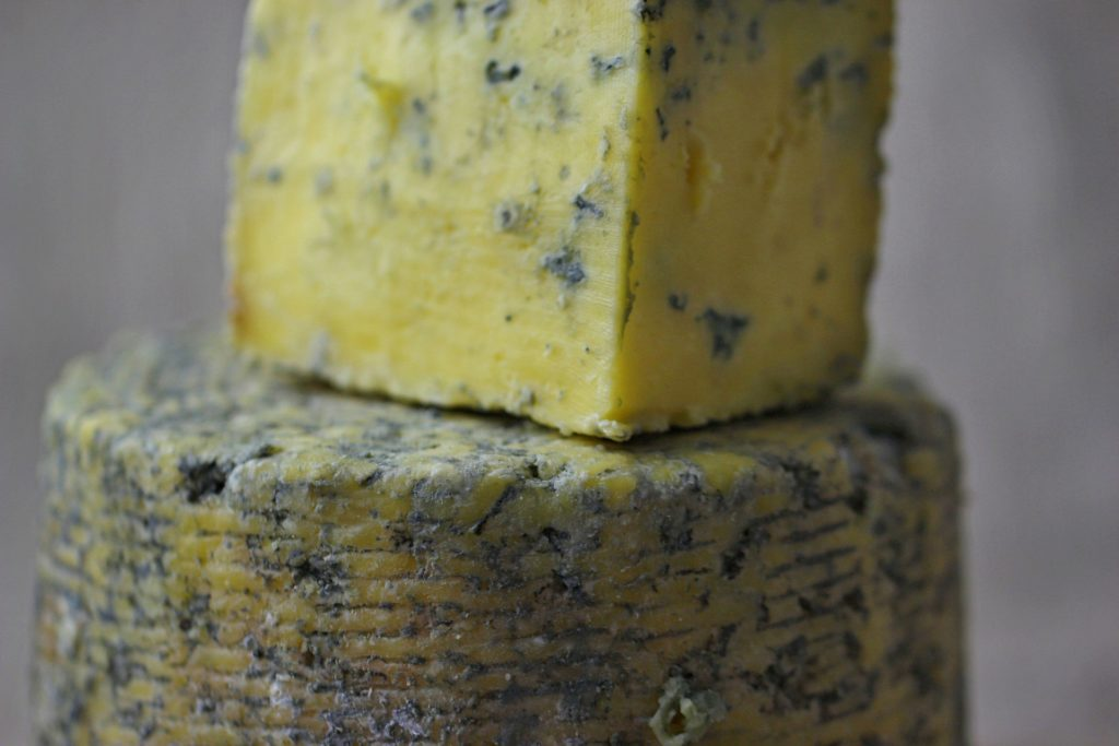 is blue cheese mold