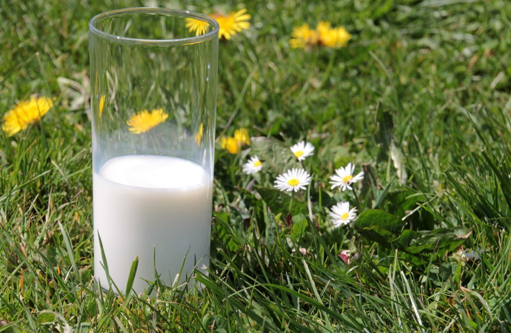does milk have vitamin d